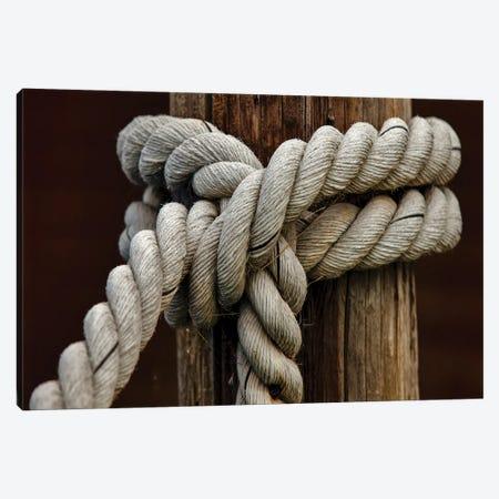 Rope Knot III Canvas Print #CAL91} by Mike Calascibetta Art Print
