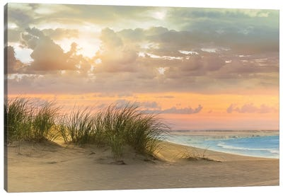 Seagrass and Twilight Canvas Art Print