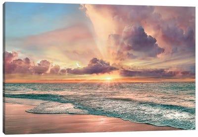 Copper Beach Canvas Art Print