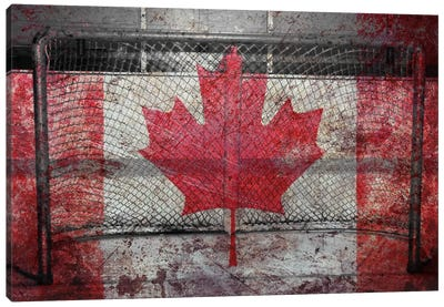 Hockey Goal Gate #3 Canvas Art Print