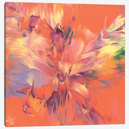 Expansion Canvas Print #CAS10} by Cassandra Tondro Canvas Artwork