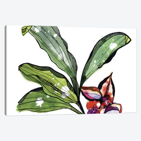 Bee Orchid Canvas Print #CBA23} by Cayena Blanca Art Print