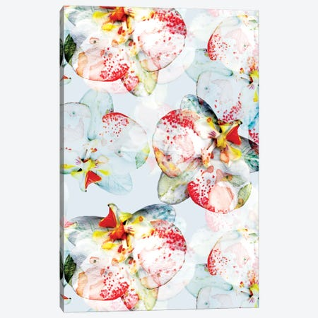 Early Bloom Canvas Print #CBA25} by Cayena Blanca Canvas Art
