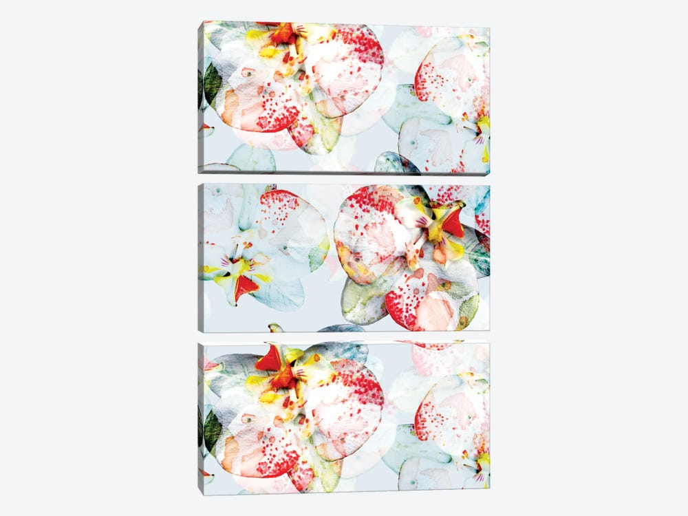 Early Bloom by Cayena Blanca 3-piece Canvas Print