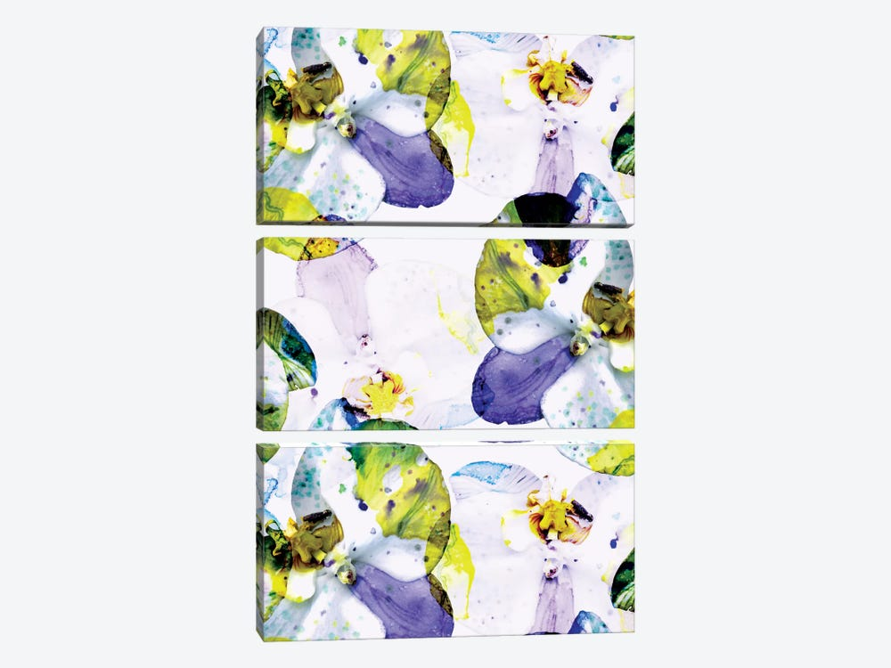 Early Bloom Vol2 by Cayena Blanca 3-piece Canvas Art
