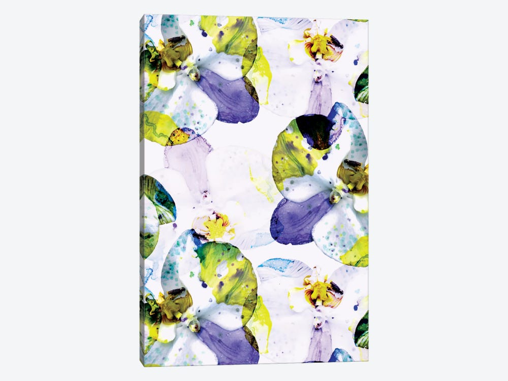 Early Bloom Vol2 by Cayena Blanca 1-piece Canvas Art