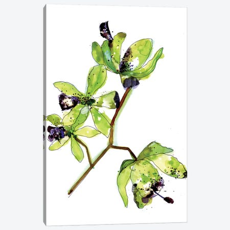 Neon Orchids Canvas Print #CBA2} by Cayena Blanca Canvas Art