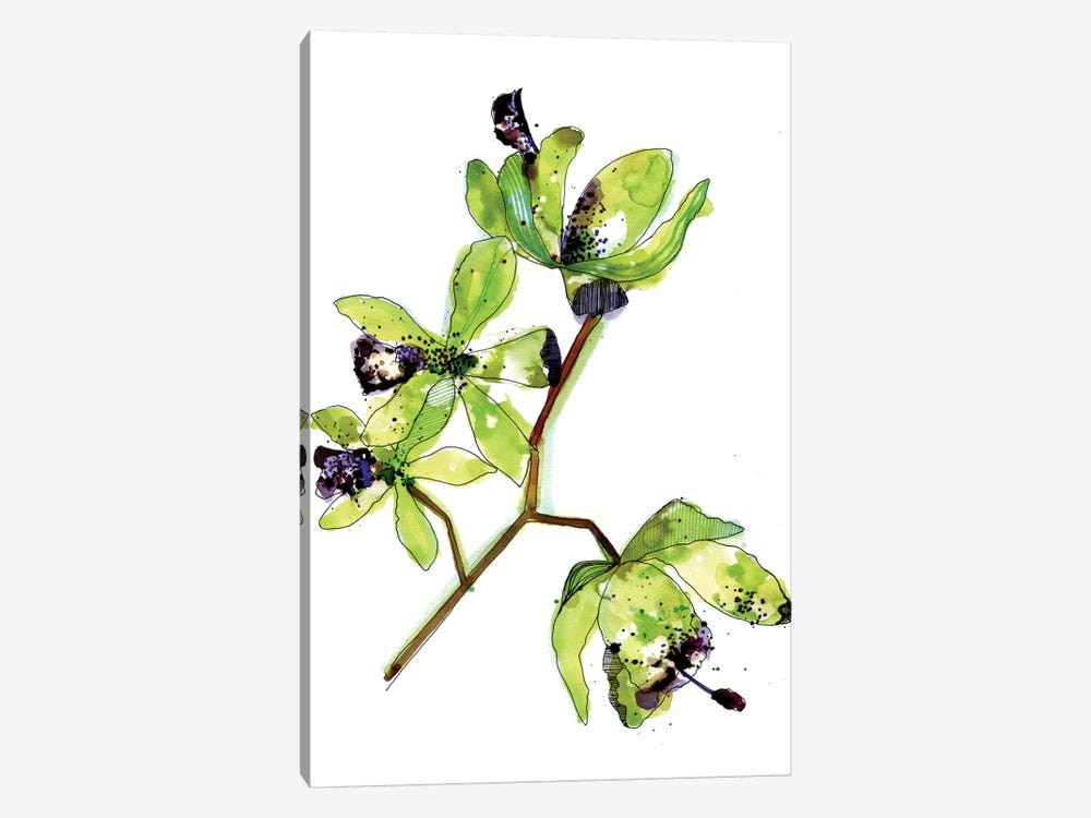 Neon Orchids by Cayena Blanca 1-piece Canvas Print