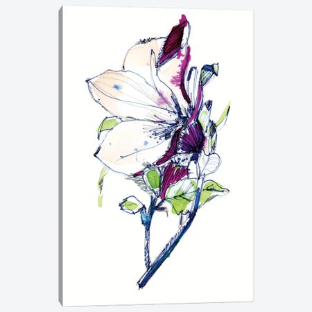 Flower Sketch Canvas Print #CBA32} by Cayena Blanca Canvas Artwork
