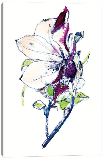 Flower Sketch Canvas Art Print