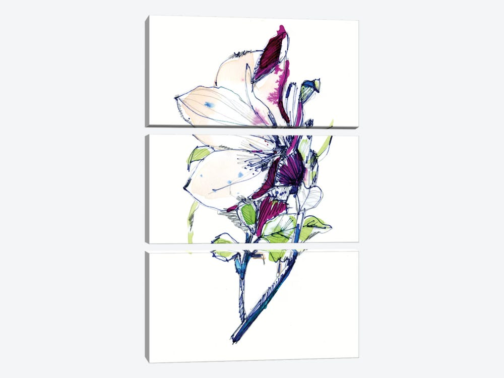 Flower Sketch by Cayena Blanca 3-piece Canvas Art Print