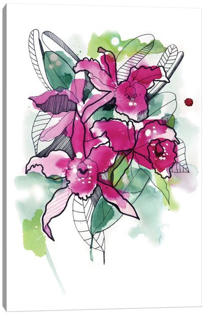 Magenta Orchids Canvas Art Print