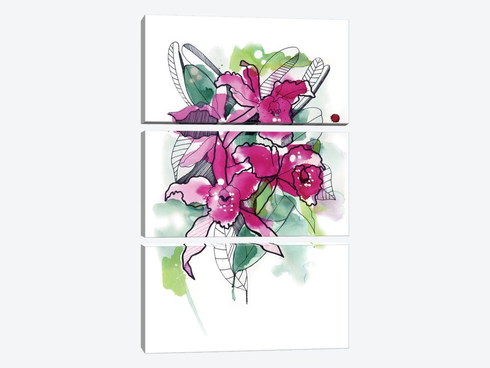 Magenta Orchids by Cayena Blanca 3-piece Canvas Art Print
