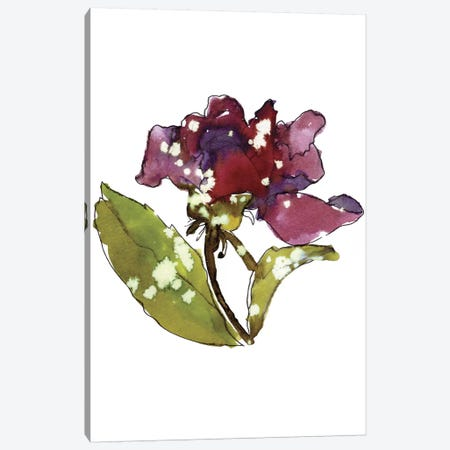 Marsala Rose Canvas Print #CBA35} by Cayena Blanca Canvas Art Print