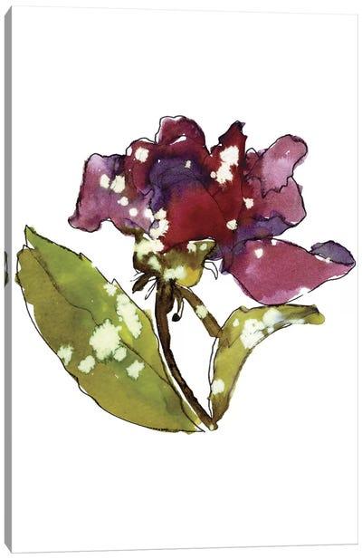 Marsala Rose Canvas Art Print