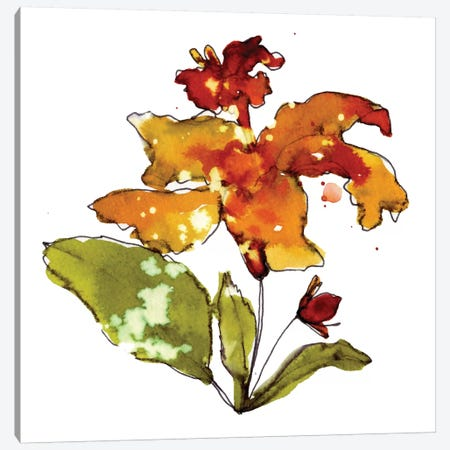 Orange Hibiscus Canvas Print #CBA3} by Cayena Blanca Canvas Wall Art