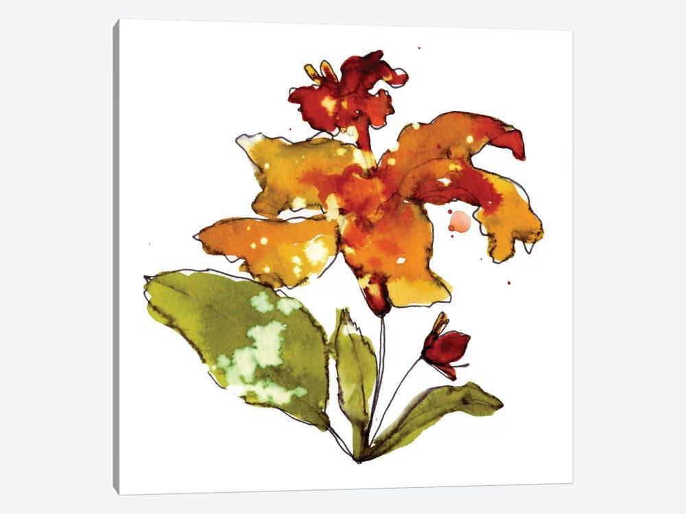 Orange Hibiscus by Cayena Blanca 1-piece Canvas Artwork