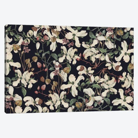 Botanical Canvas Print #CBA47} by Cayena Blanca Canvas Artwork
