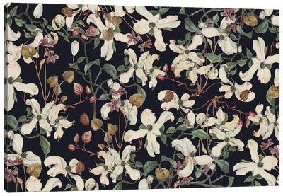 Botanical Canvas Art Print