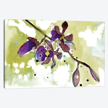 Purple Orchids Canvas Print #CBA9} by Cayena Blanca Canvas Artwork