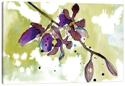 Purple Orchids Canvas Art Print