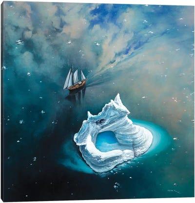 Soaring Through The Sky Canvas Art Print