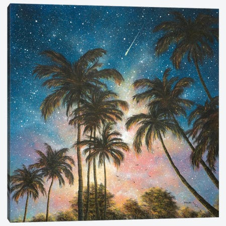 Tropical Night Canvas Print #CBF18} by ColorByFeliks Canvas Art Print