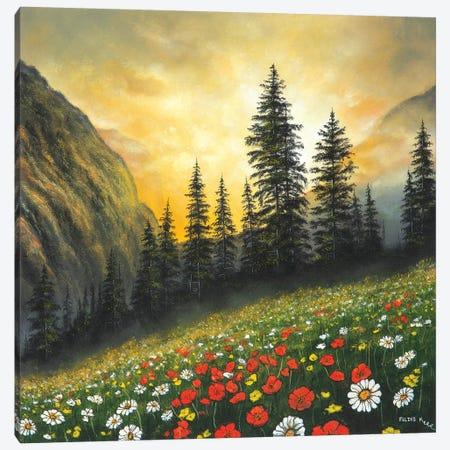 Among The Mountains Canvas Print #CBF1} by ColorByFeliks Canvas Art Print