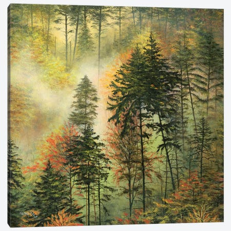 Northwest Glory Canvas Print #CBF29} by ColorByFeliks Canvas Art