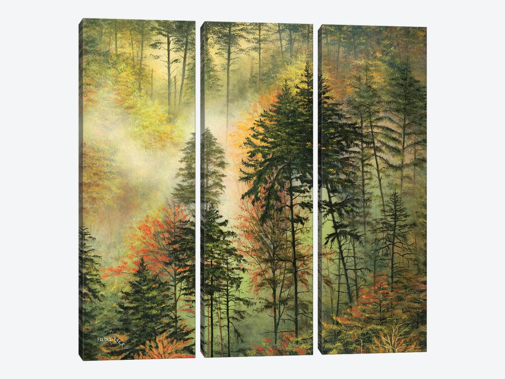 Northwest Glory by ColorByFeliks 3-piece Canvas Wall Art
