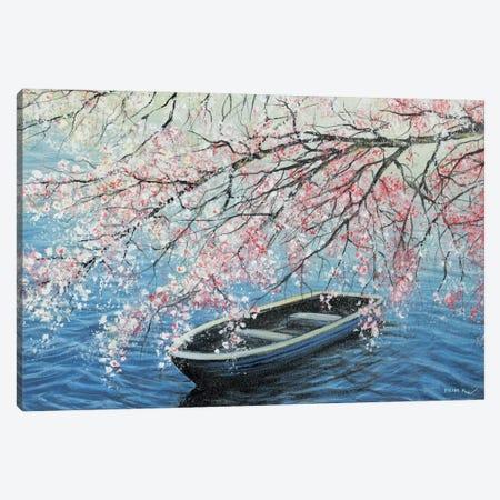 Cherry Blossoms Canvas Print #CBF36} by ColorByFeliks Canvas Art