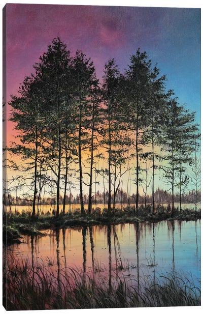Stillness Canvas Art Print