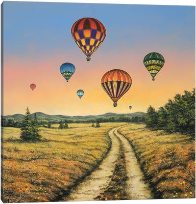 Field of Dreams Canvas Art Print