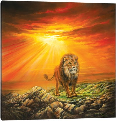 Lion Of Judah Canvas Art Print