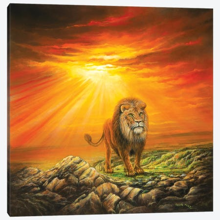 Lion Of Judah Canvas Print #CBF8} by ColorByFeliks Art Print