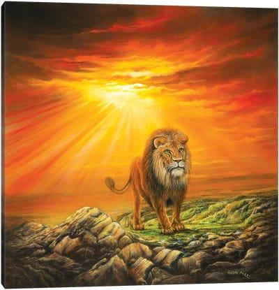 Lion Of Judah Canvas Art Print