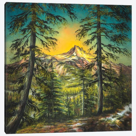Mountain Glow Canvas Print #CBF9} by ColorByFeliks Canvas Art Print