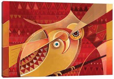 Kobi Kobi The Little African Owl Canvas Art Print