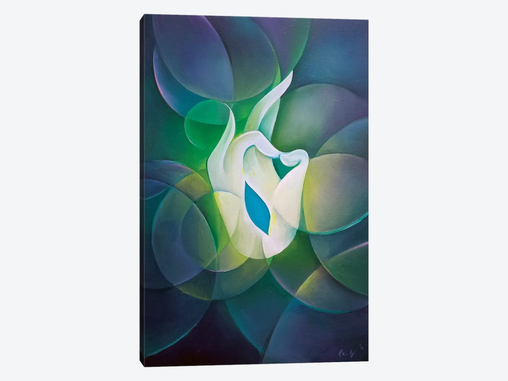 Blessing by Martin Cambriglia 1-piece Canvas Art Print