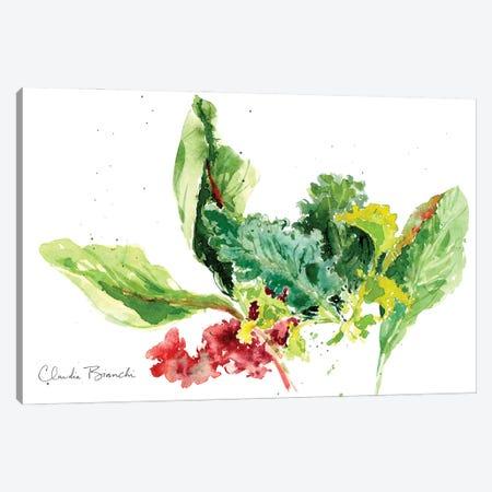 Garden Greens Canvas Print #CBI100} by Claudia Bianchi Canvas Wall Art