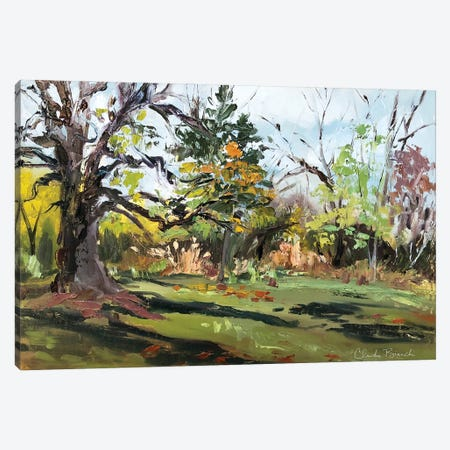 At The Grove Canvas Print #CBI102} by Claudia Bianchi Canvas Artwork