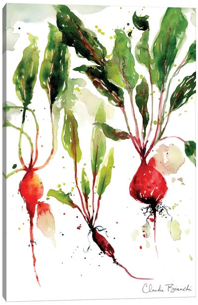 Garden Beets Canvas Art Print