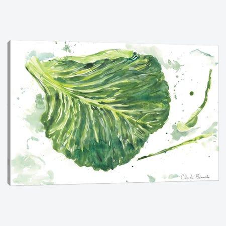 Cabbage Garden Canvas Print #CBI104} by Claudia Bianchi Canvas Print