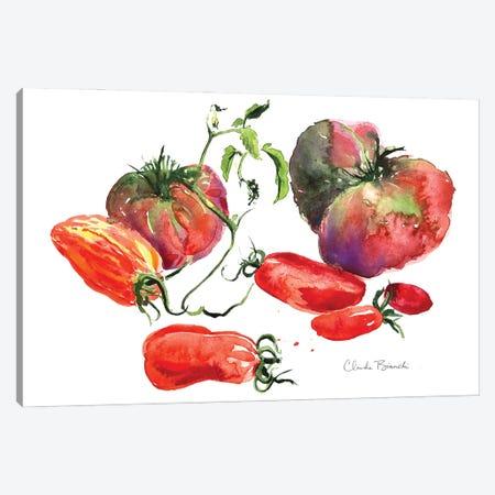Tomato Still Life Canvas Print #CBI108} by Claudia Bianchi Canvas Artwork