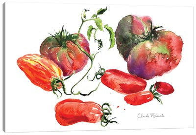 Tomato Still Life Canvas Art Print