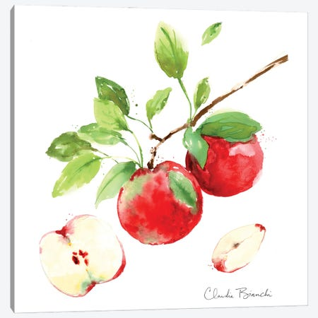 Apple Season Canvas Print #CBI109} by Claudia Bianchi Canvas Wall Art