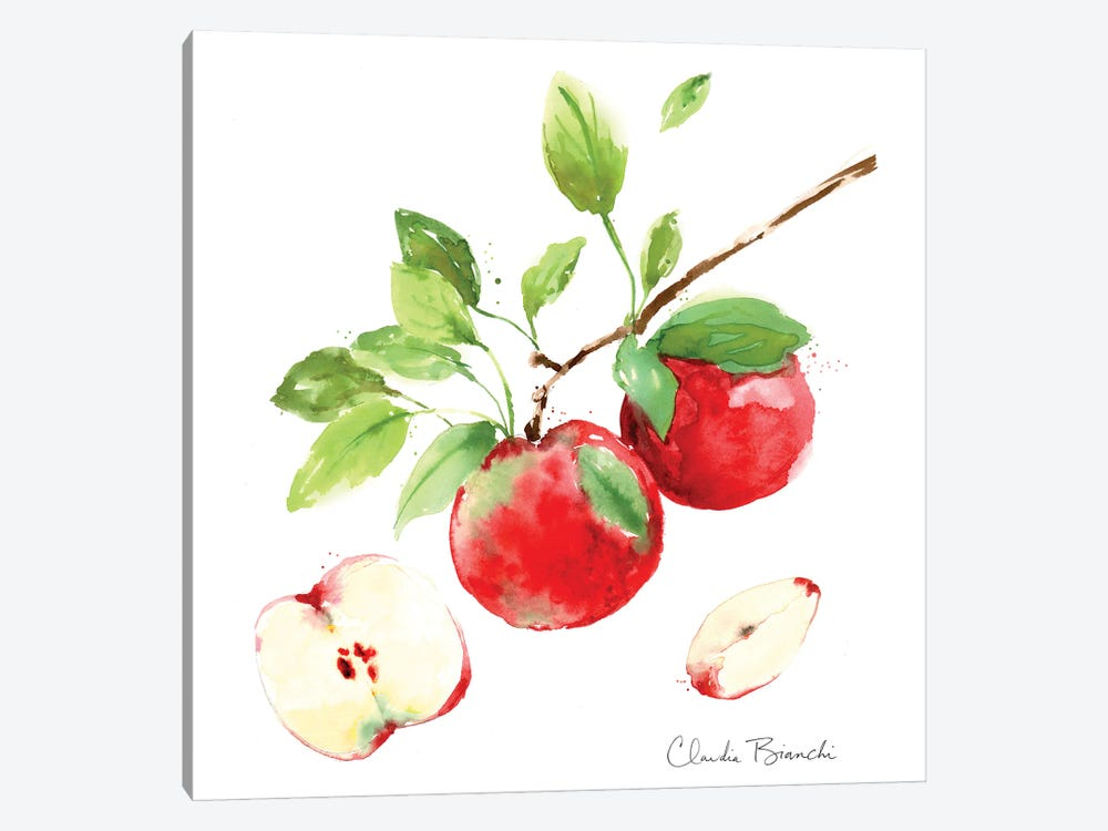 Apple Season by Claudia Bianchi 1-piece Canvas Wall Art