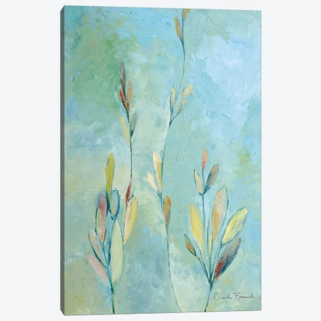 Kelpa Canvas Print #CBI32} by Claudia Bianchi Canvas Artwork