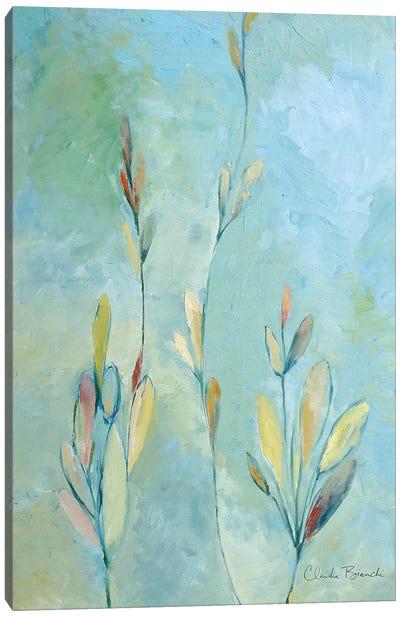 Kelpa Canvas Art Print