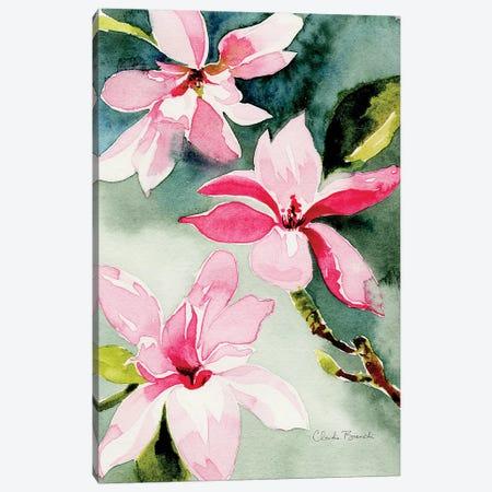 Magnolias Canvas Print #CBI38} by Claudia Bianchi Canvas Art